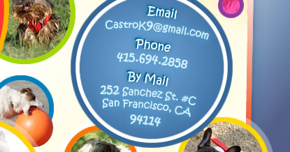 Email - CastroK9@gmail.com | Phone - 415.694.2858 | By Mail - 252 Sanchez St. #C, San Francisco, CA 94114